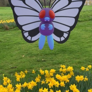 Butterfree hambriento